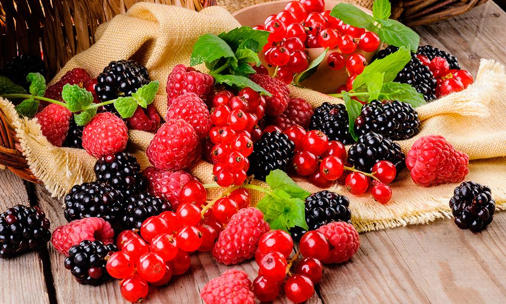 As Poderosas Frutas Vermelhas