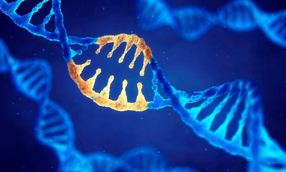 O Que é A Terapia Genética?