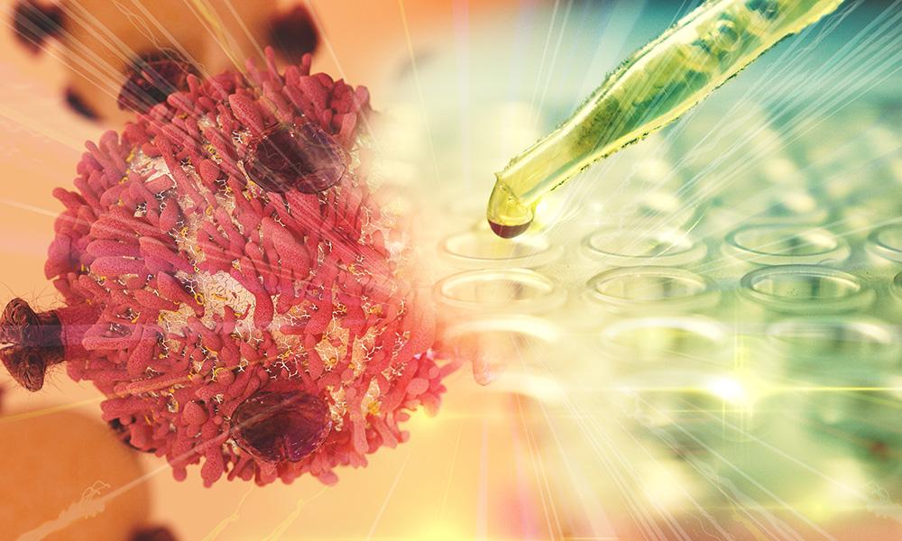 Tudo Sobre Células-tronco