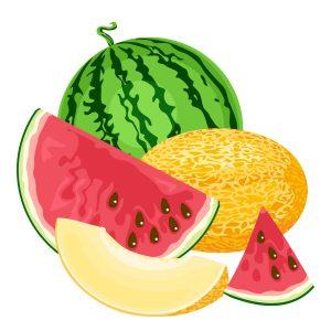 frutas ajudam na ingestão de água - câncer