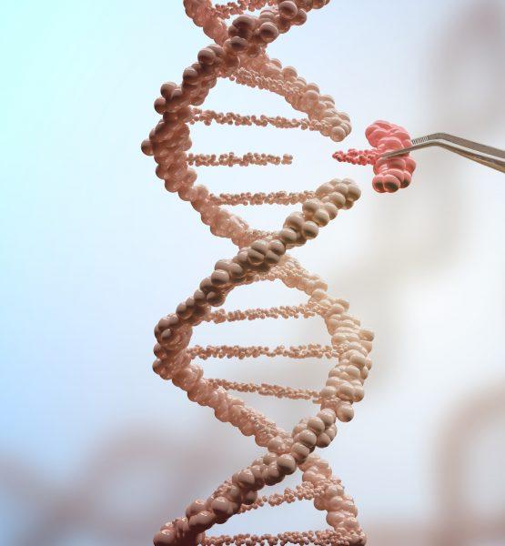 biotecnologia - câncer - terapias biológicas