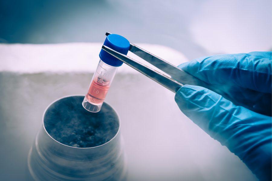 células-tronco; câncer; células tronco; leucemia; celulas tronco