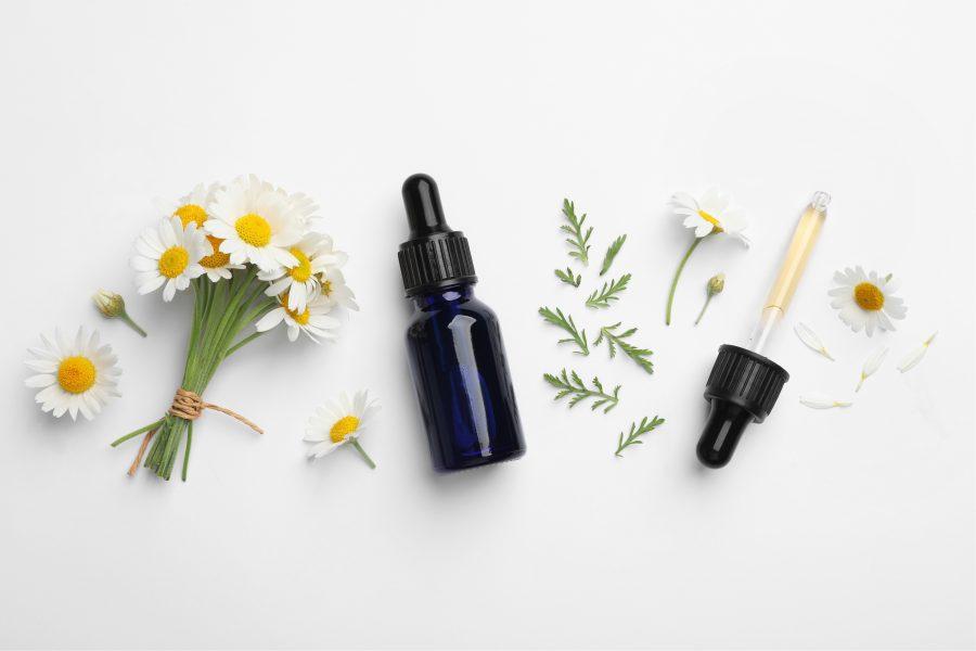 terapia com florais, terapia floral, O que são florais, floral