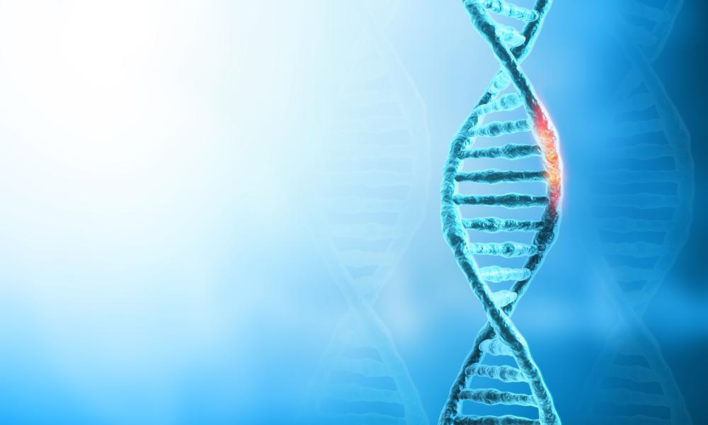 O Que A Mutação Genética Significa Para Um Câncer