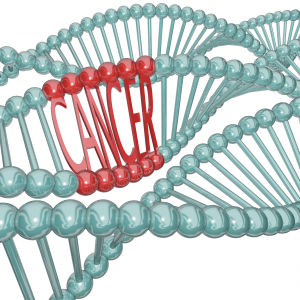 mutações, mutações genéticas, mutações gênicas, mutações cromossomicas, mutação genica, o que é mutação, doenças cromossomicas, mutações genéticas, tipos de mutação, o que é mutação genética, mutaçao, mutação cromossomica, mutação genetica , mutações genicas, mutações gênicas e cromossômicas, o que são mutações, mutação somática e germinativa, tipos de mutações gênicas, o que é gene, o que são genes, biologia genetica canceres, o que é mutação, tipos de mutação, doença genetica, conceito de gene, o que sao genes, genes supressores de tumor, dna genetica, celula cancerigena, genetica do cancer, genética do cancer, cancer é hereditario, doença hereditaria, cancer hereditario, cancer doença, alterações genéticas, como o cancer se desenvolve, como ocorre o cancer, genética do cancer, o que são oncogenes, exame para saber se tera cancer, como é feito o teste genetico, rearranjos cromossômicos, como funciona o cancer, diferença entre celulas normais e cancerigenas, mutação; mutação genética, mutações, mutações genéticas