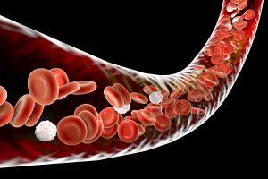 transfusão de sangue, necessita, transfusão, oncológico, transfusão de plaquetas, transfusao de sangue, paciente oncologico, doador universal sangue, pessoa com cancer, cancer de sangue, o que é transfusão de sangue, transfusão de sangue anemia, quando é necessário uma transfusão de sangue, transfusao, especialista em sangue, cancer sangue, paciente com cancer, o que uma pessoa com cancer nao pode fazer, tipos de cancer no sangue, hemácias leucócitos e plaquetas, tipos de hemacias, tipos de transfusão de sangue, componentes sanguineos, do que é composto o sangue, tratamento com sangue, tratamento oncologico, doação de plaquetas riscos, de que é composto o sangue, bolsa de plaquetas, tomar sangue, câncer de sangue, plaquetas para que serve, transfusao de plaquetas, tomar bolsa de sangue, como é feita a transfusão de sangue, um paciente necessita, plaquetas e hemacias, reposição de plaquetas, bolsa sangue, transplante de sangue, o sangue é composto por, para que serve o sangue, do que o sangue é composto, como é formado o sangue, anemia, hemacias, doenças que necessitam de transfusão de sangue, tipos de transfusão de sangue, tomar sangue, tomar bolsa de sangue, o que é transfusão sanguinea, o que é transfusão sanguínea, o que é linfoma no sangue, pessoa com.cancer fazendo transfusão de sangue, transfusão de sangue em pessoas com cancer, doar sangue dói, benefícios de doar sangue, quem não pode doar sangue, doação de sangue campinas, banco de sangue paulista, onde doar sangue em são paulo, doação de sangue porque é importante, o que acontece depois da doação de sangue, como fazer uma campanha de doação de sangue, doação de sangue, bolsa de sangue, qual a importancia da doação de sangue, doacao de sangue, doaçao de sangue, doação de sangue no brasil, doação de sangue quem doa pra quem, o que é doação de sangue, doação de sangue de quanto em quanto tempo
