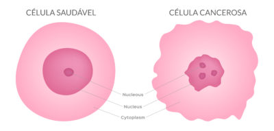 Celulas sanguineas, celulas do sangue, células sanguíneas, células do sangue, hemacias, hemácias, glóbulos vermelhos, globulos vermelhos, granulocitos, granulócitos, agranulocitos, quantidade de sangue no corpo, leucocitos normais, qual o valor normal de linfocitos no sangue, leucócitos normal, função das hemácias, o que são eritrócitos, leucocitos valores de referencia, porque o sangue é vermelho, eritrócitos o que é, função da medula ossea, granulócitos e agranulócitos, glóbulos vermelhos e brancos, função dos globulos vermelhos, o que são globulos vermelhos , globulos vermelhos função, doenças sanguineas, leucócitos normais, qual a função dos globulos vermelhos, celulas sanguineas e suas funções , função das hemacias, tipos de celulas sanguineas , baixa de leucocitos, linfocitos acima do normal, doenças relacionadas ao sangue, celulas hematologicas, leucocitos acima, leucocitos hemograma, leucócitos abaixo do normal, globulos vermelhos e brancos, como aumentar as plaquetas depois da quimioterapia, formação das celulas sanguineas, celulas jovens, celula normal , onde são produzidas as celulas sanguineas, quais são as celulas do sangue, sangue, composição do sangue, componentes do sangue, celulas do sangue, o que é plasma, função do plasma plasma sanguineo, quais os componentes do sangue, onde o sangue é produzido, elementos do sangue, cancer no sangue, cancer sangue, celulas tumorais, células tumorais, cancer do sangue, celulas normais e celulas cancerigenas , celulas cancer, leucemia tem cura cancer linfoma, coçeira no corpo todo o'que pode ser cancer, cancer de sangue, cancer na medula, manchas roxas nas pernas pode ser leucemia, aumento do baço, leucemia manchas, leucemia no sangue, leucemia é cancer, cancer no sangue sintomas, sintomas de leucemia no sangue, linfoma no sangue, tipos de cancer no sangue, plaquetas normais plaquetas funcao, plaquetas baixas, plaquetas altas, como aumentar as plaquetas, plaquetas para que serve, plaquetas sao celulas, plaquetas b