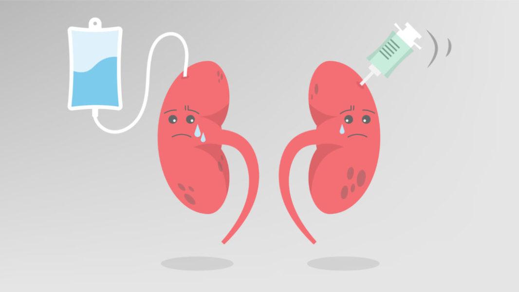 Dentre Os Efeitos Colaterais Das Plantas Medicinais Estão Problemas No Fígado E Nos Rins